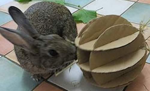 Подвесная игрушк-шар из картона для декоративного кролика